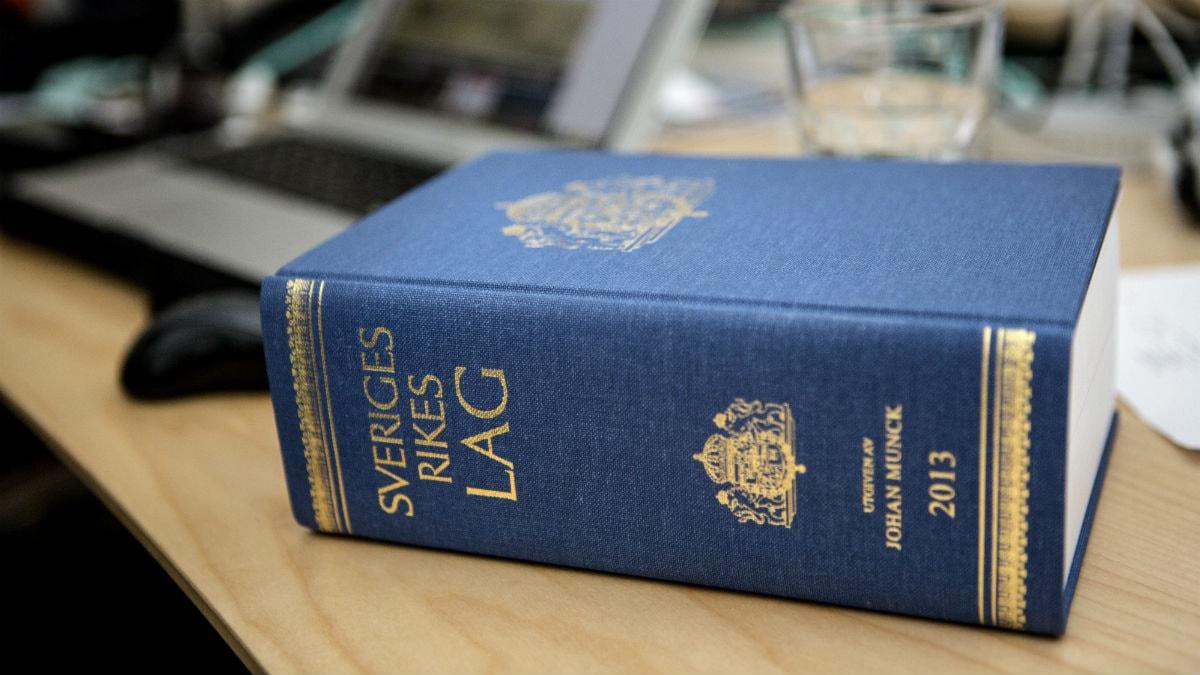 Järjestö vaatii lakia, joka asettaisi kiusaajan lailliseen vastuuseen. Foto: Christine Olsson / TT