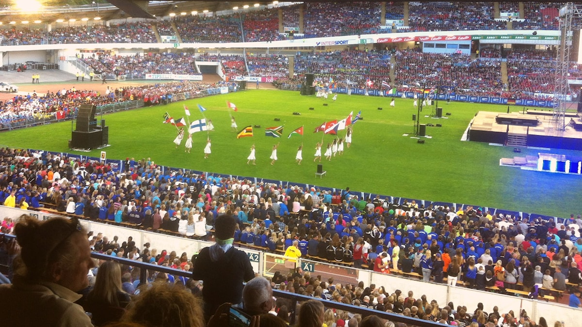 Osallistuvien maiden liput Gothia Cup 2014 avajaisissa Foto:Elina Härmä, Sisuradio