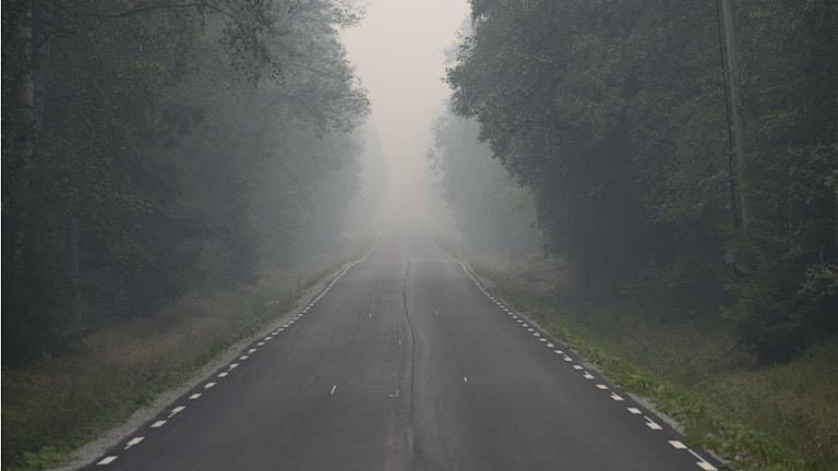 Västmanlannin yllä on metsäpalon takia sakea savu. FOTO: PONTUS LUNDAHL / TT
