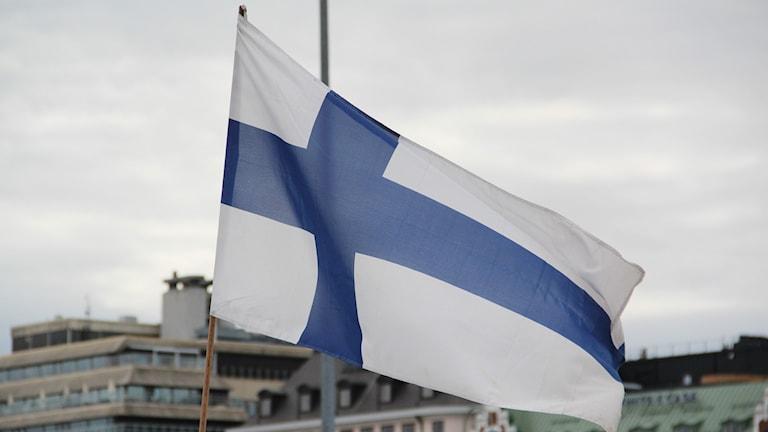 Suomen lippu finsk flagga Foto: Mikko Mäkitalo / Sveriges Radio