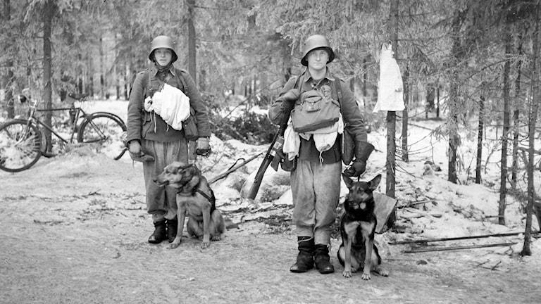 Sota-ajan kuvassa kaksi sotilasta viestikoirineen. Summa. 1939.12.14