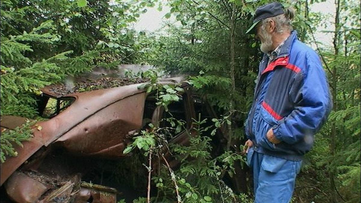 Mies seisoo katsomassa kuuusikon keskellä oleva autonromua.