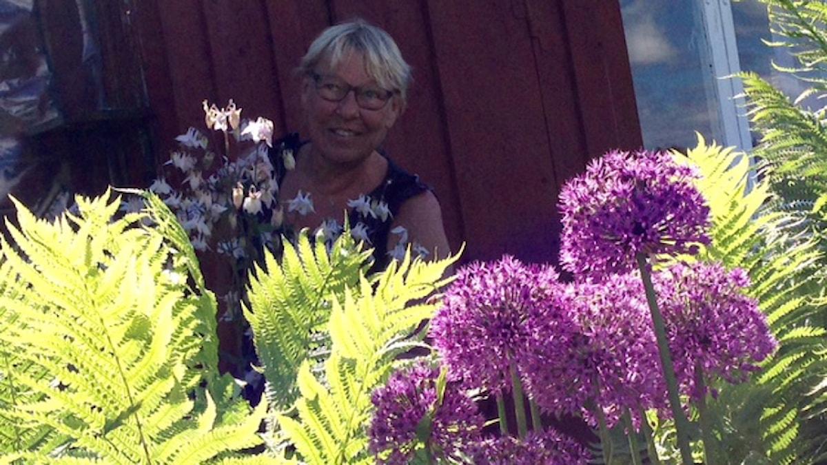 Annen siirtolamökillä kukkii