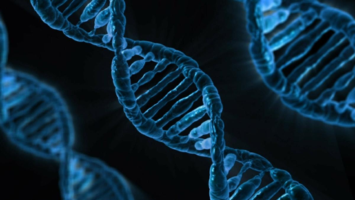 Mustalla taustalla tummansininen DNA-kierre. Kuva: Public Domain