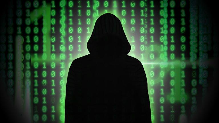 Bedragare lurar på nätet