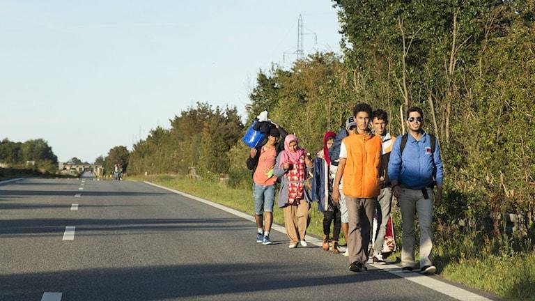 Kuvassa näkyy pieni joukko pakolaisia kävelemässä autotien vartta.