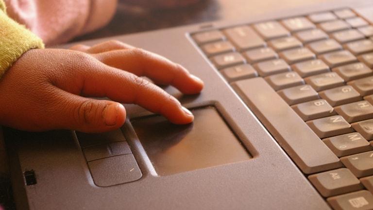 Lapsen sormet käyttävät tietokonetta. Foto: Amelia Wells / CC BY 2.0