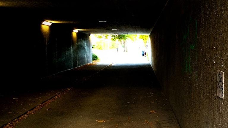 Tunnelin päässä näkyy valo. Ljuset i slutet av tunneln. Foto: Daniel Gustafsson/Sveriges Radio