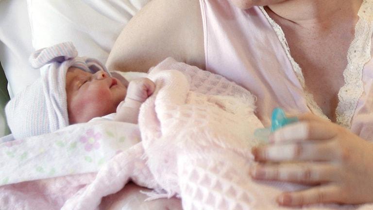 Kuvassa vastasyntynyt vauva. Foto/Kuva: Michael Zamora / TT