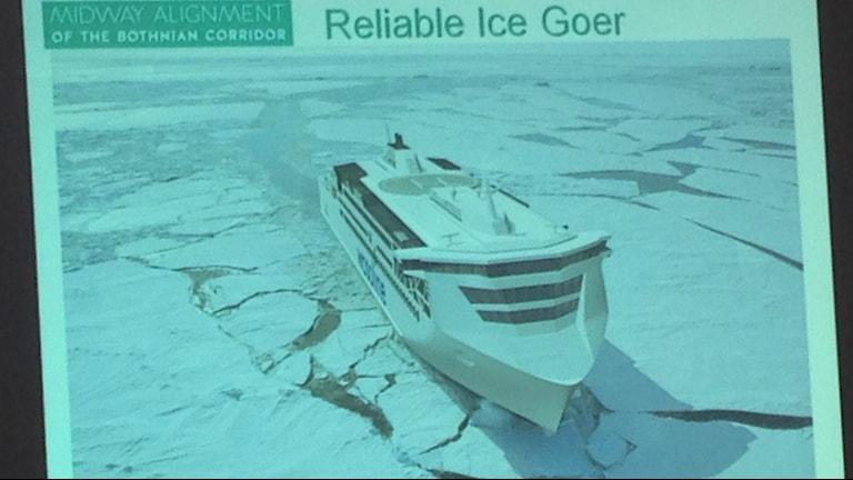 Havainnekuva suunnitellusta Merenkurkun laivasta. kuva/foto: Erpo Heinolainen SR Sisuradio