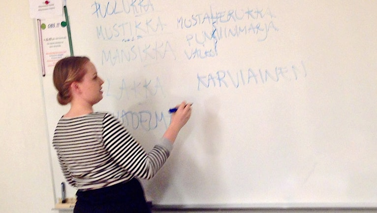 Projektipäällikkö Suvi Hänninen kirjoittamassa marjojen nimiä taululle