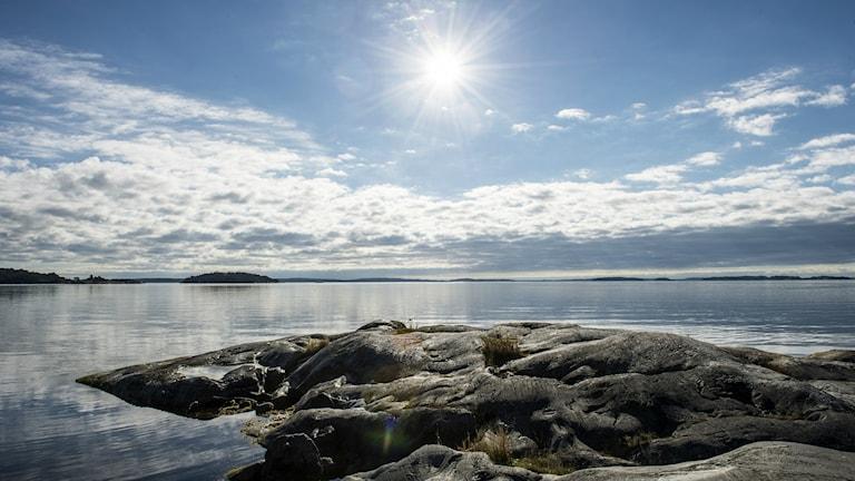 Aurinkoinen maisema kalliolta merelle Tukholmassa. Foto: Lars Pehrson/SvD/TT