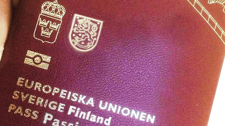 Ruotsinsuomalainen passi, hallintoalue