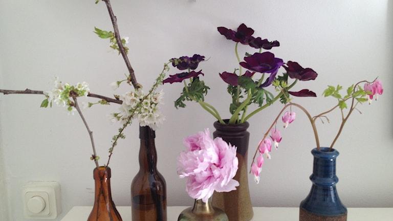 Hanna Maria Piipon pieniä kukka-asetelmia