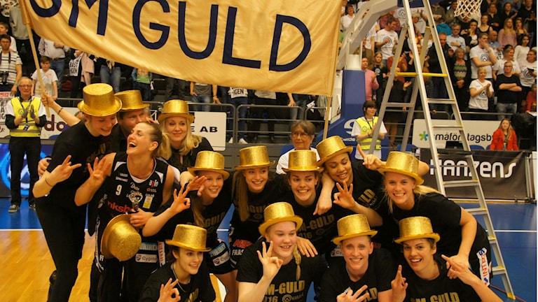 Ruotsin mestarit