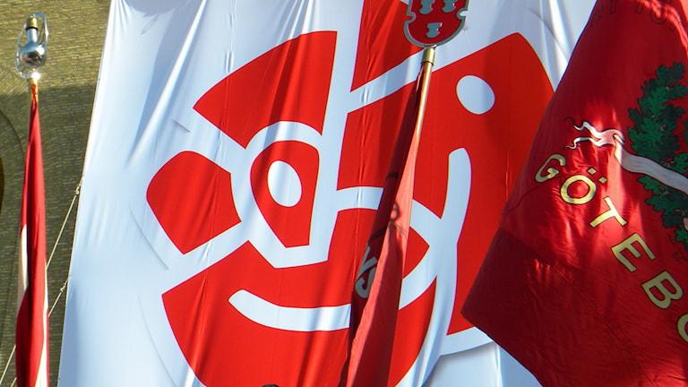 Sosiaalidemokraattien lippuja, Socialdemokraternas flaggor