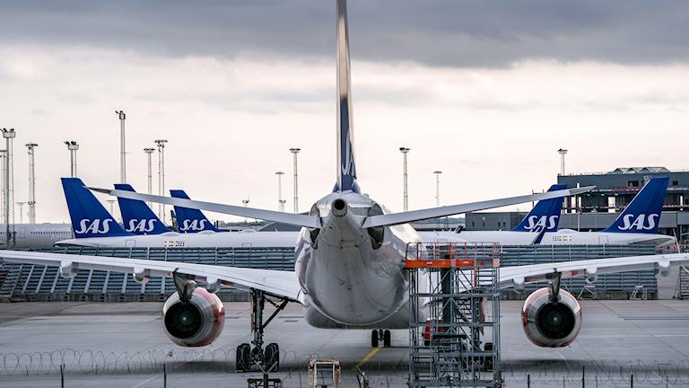 SAS:n mediasuhteiden johtaja Freja Annamatz kertoo, että yhtiön tavoite on lentää kaikki Skandinavian sisäiset lennot uusituvalla polttoaineella vuoteen 2030 mennessä.