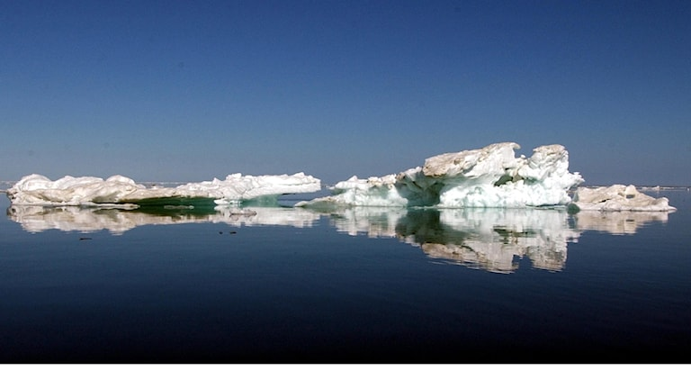 Alaska isberg