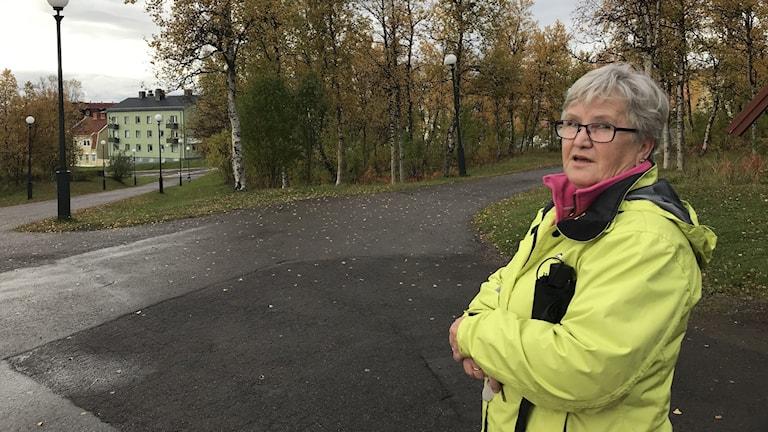 Liisa Ylitalon tutut maisemat Kiirunassa puretaan tai siirretään kolme kilometriä itään.