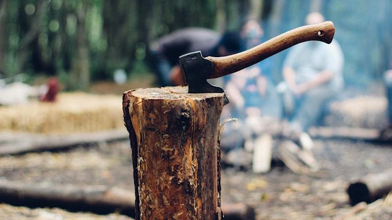 Kirves lyötynä puupölkkyyn.