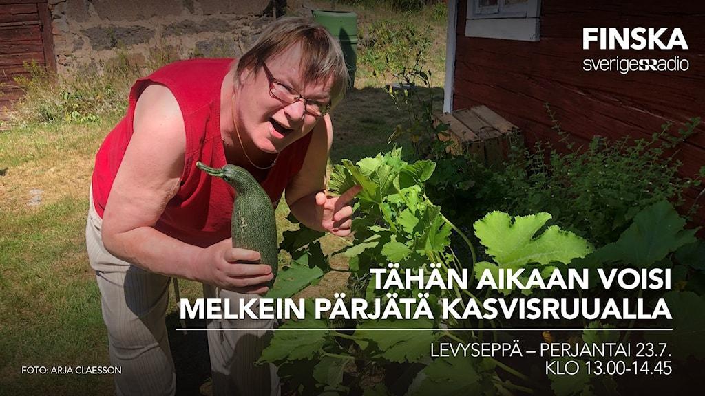 Levysepän juontaja Pirjo Rajalakso pitää kesäkurpitsaa kädessä.