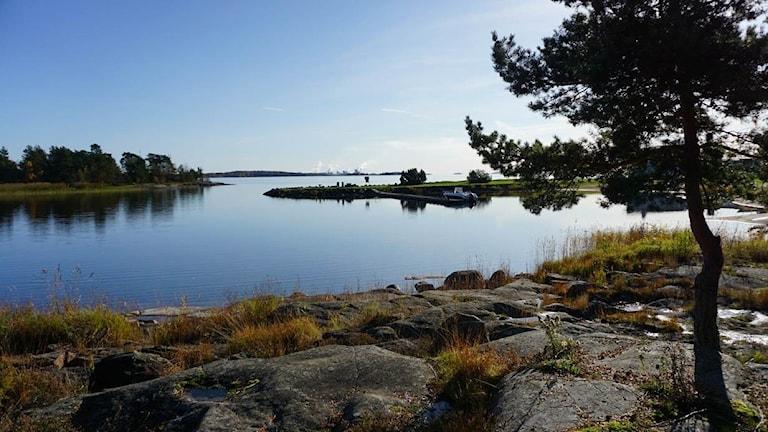 Skutbergeti, Karlstad.