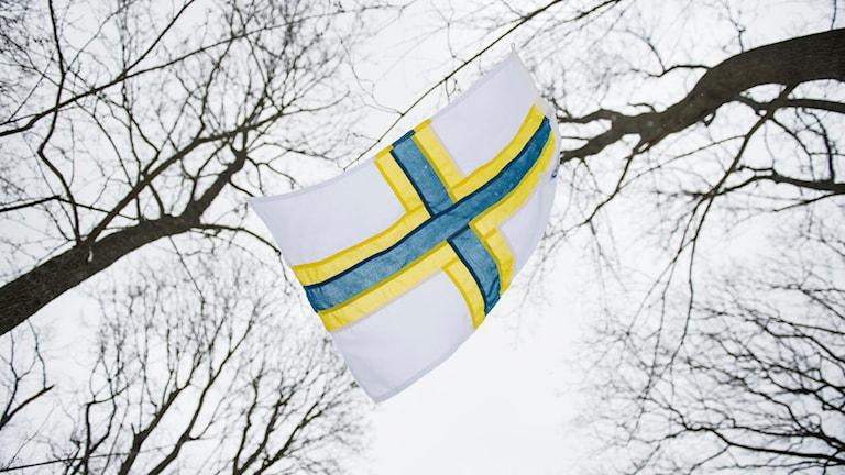 Ruotsinsuomalainen lippu Sverigefinska flaggan