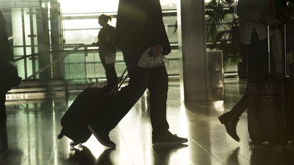 Kuvassa henkilöitä lentikentällä matkalaukkujen kanssa.