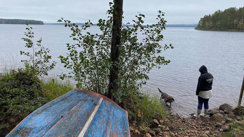 vene, viiriäiskoira ja Veera.