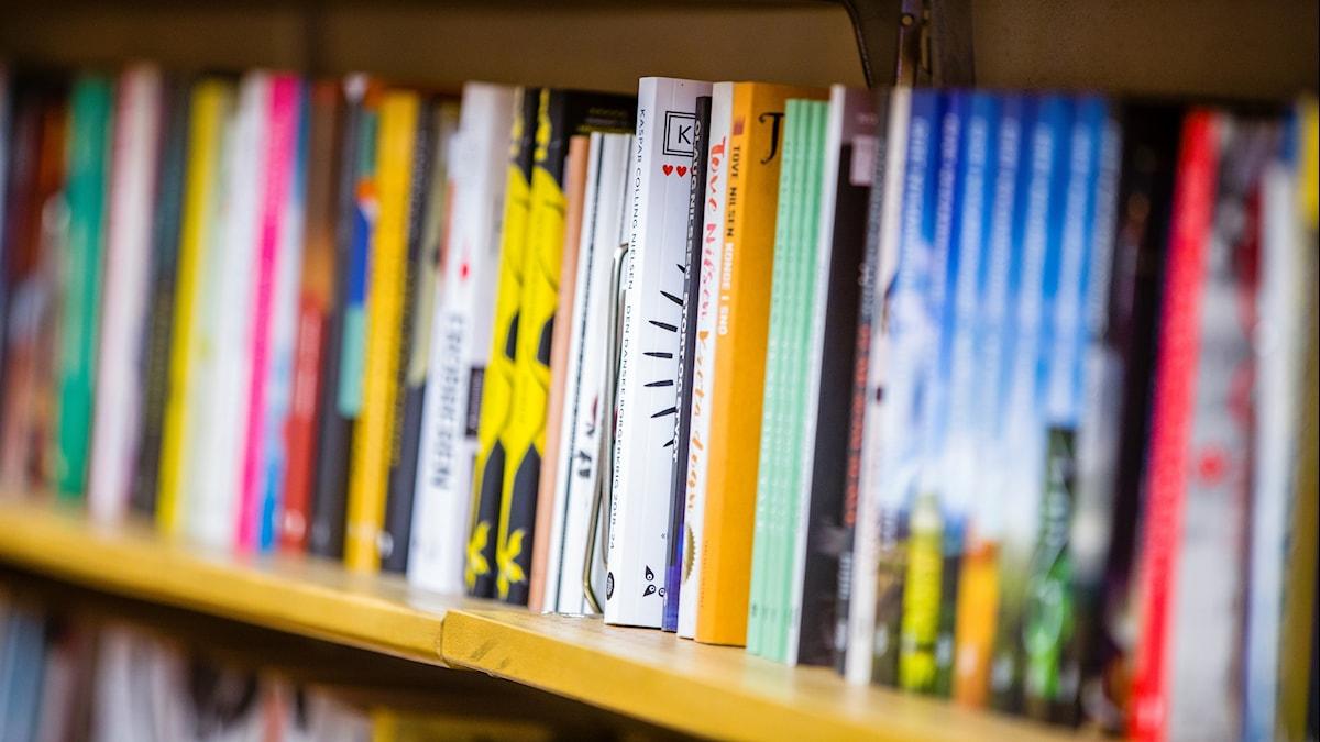Kirjoja kirjahyllyssä.