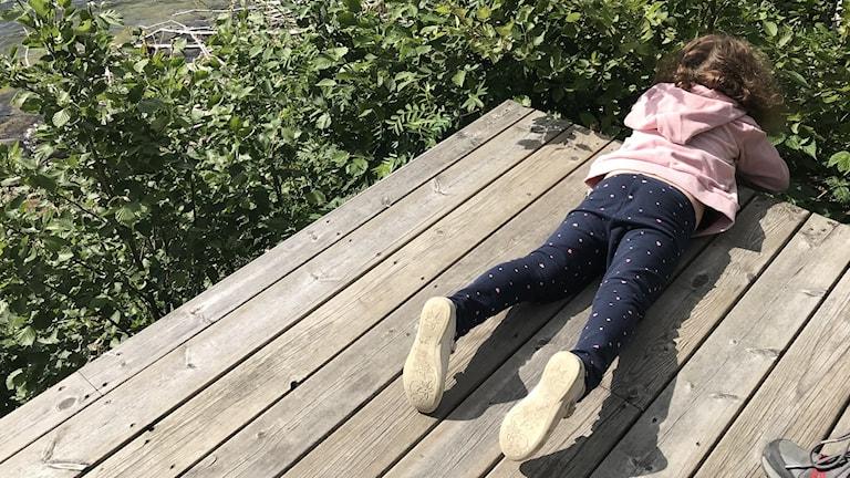 Lapsi makaa laiturilla ja katselee pusikkoon.