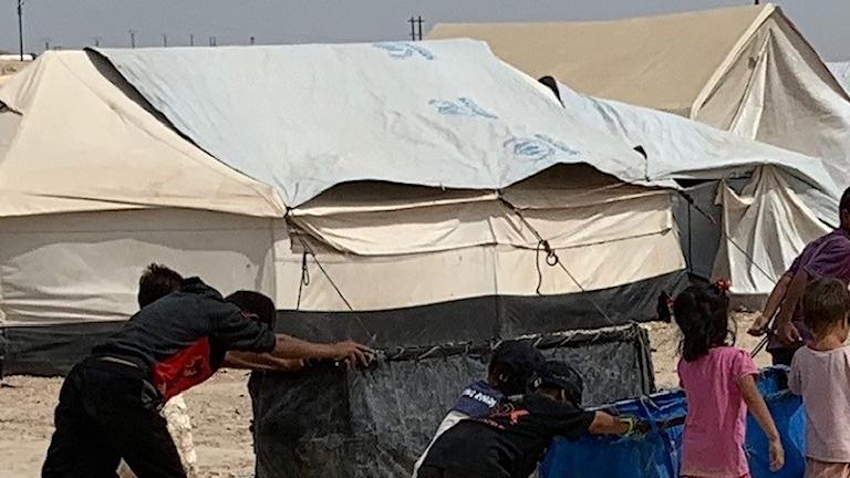 Barn i al-Hol-lägret.