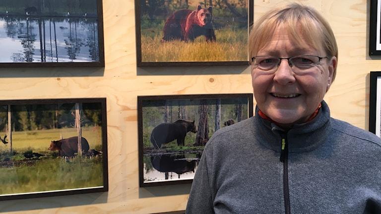 Sisko Soikkeli kuvasi karhuja Kuhmossa