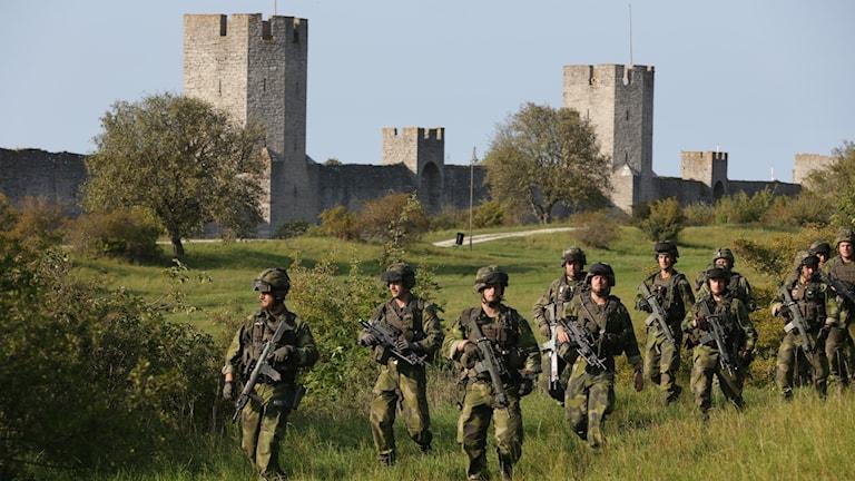 Soldater i grönskan på Gotland