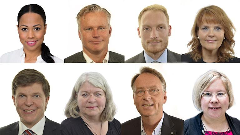 Alice Bah Kuhnke (MP), Hans Ekström (S), Aron Emilsson (SD), Nina Lundström (L), Andreas Norlén (M), Mia Sydow Mölleby (V), Roland Utbult (KD) ja Linda Ylivainio (C).