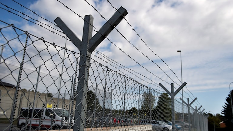 Kuva vankilan piikkiaidasta.