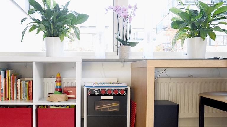 Työpöytä, hylly ja kukkia kotona.