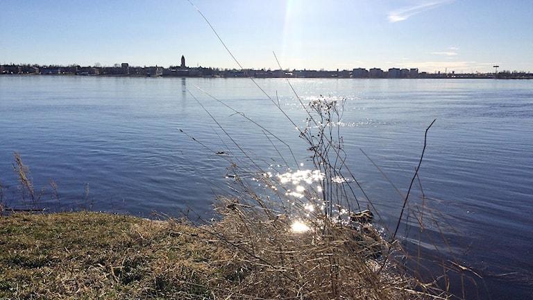 Jokimaisema Haaparanta-Torniossa.