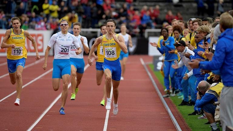 Kuvassa miesten 800 metrin juoksijoita.