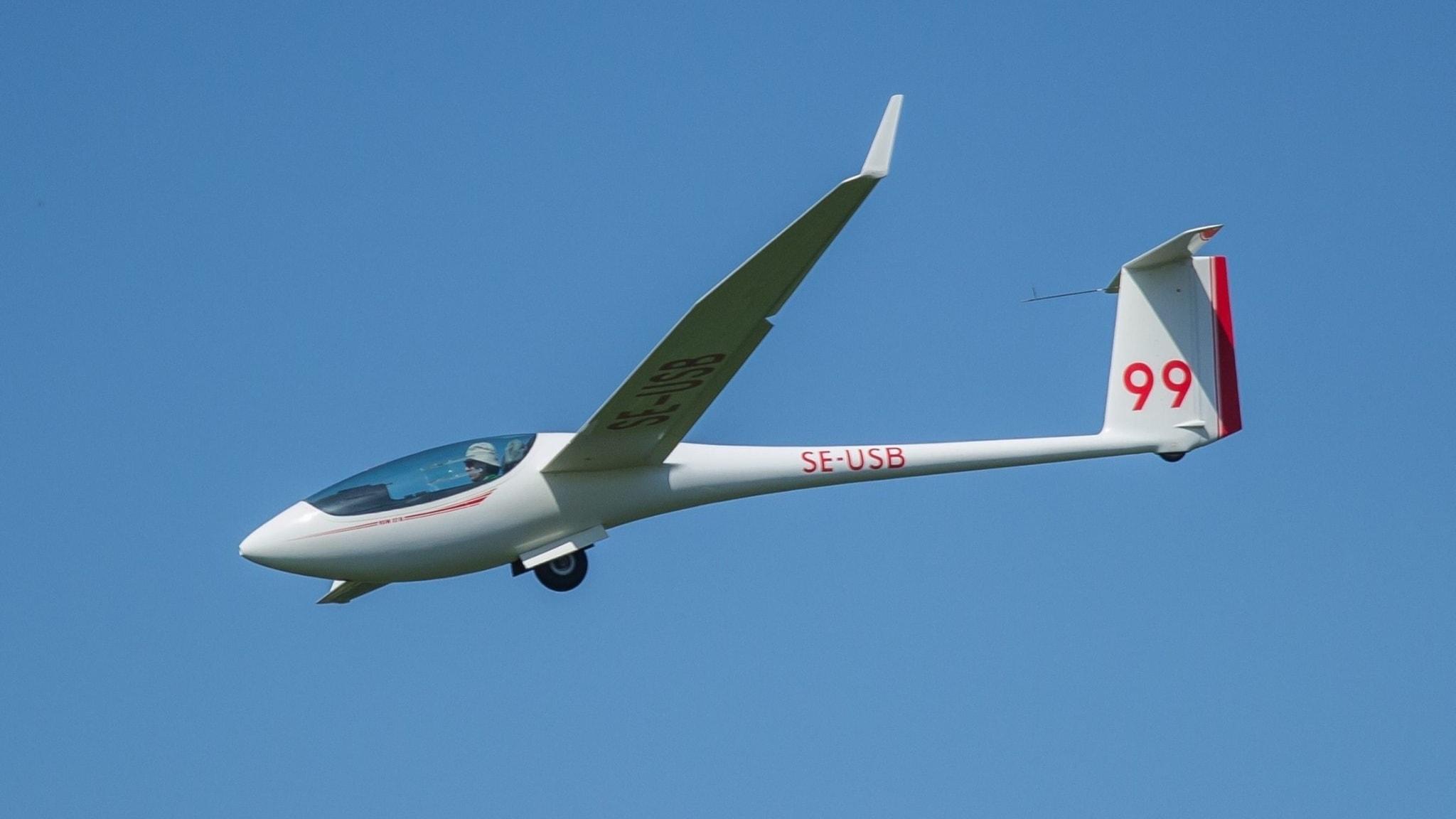 Lentävä ympäristöstrategi ja muodin oikkuja