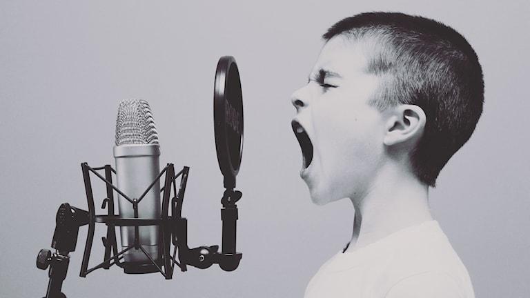 En kille sjunger i en mikrofon