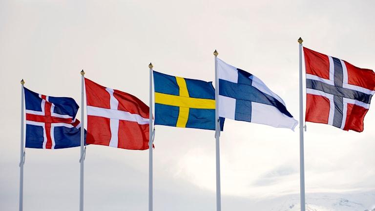 Pohjoimaiden liput liehyvat rivissä, vasemmalta Islanti, Tanska, Ruotsi, Suomi ja Norja.