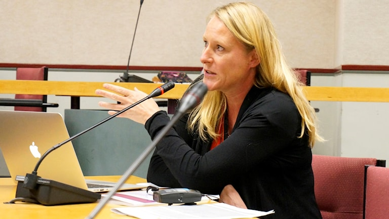 Akatemian tutkija Reetta Toivanen puhuu kokoustilassa mikroniin. Kuva: Privat.