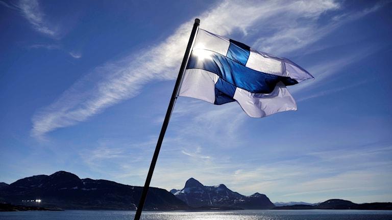 Kuvassa Suomen siniristilippu.