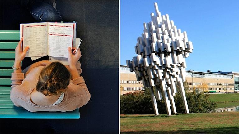 En kvinnligstudent sitter på en bänk och en staty utanför Umeå universitet