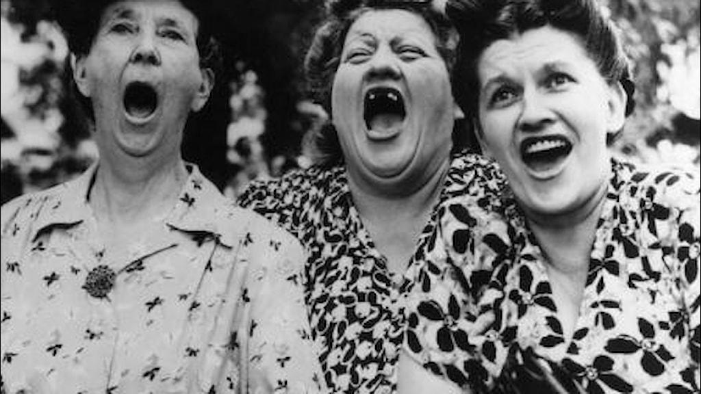 Naisia naurattaa kovasti.