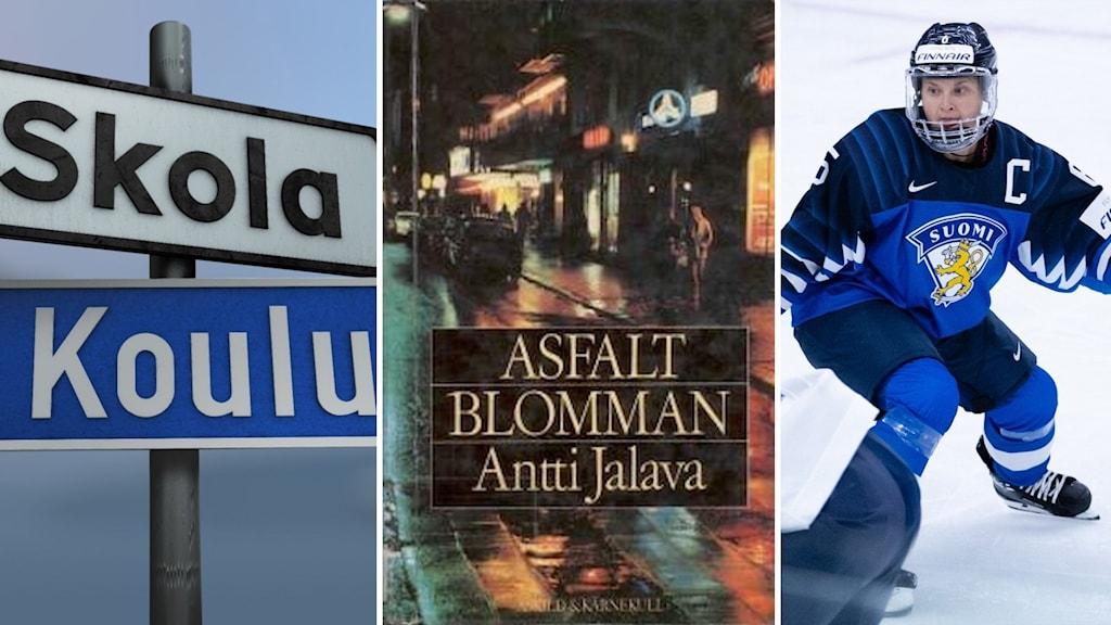 Koulukyltti suomeksi ja ruotsiksi, Antti Jalavan kirjoittaman kirjan Alsfalttikukkank kansi ja suomalainen jääkiekkoilija Jenni Hiirikoski.