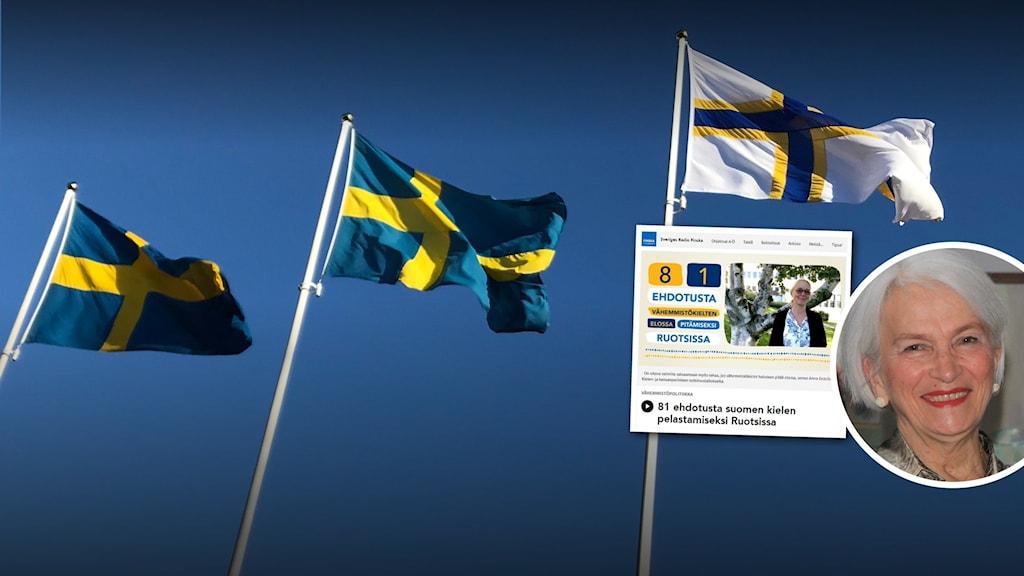 Taustakuvassa näkyy kolme lippiutanko, joissa kahdessa on ruotsinlippu, ja kolmannessa ruotsinsuomalaisten lippu. Oikealla kaksi pienemppää kuvaa, yksi niistä on faksimiili vanhasta netiiartikkelistä, ja toinen on kuva naisesta joka katsoo kameraan.