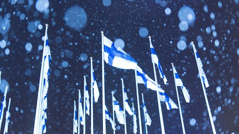 finska flaggor på salutorget i helsingfors