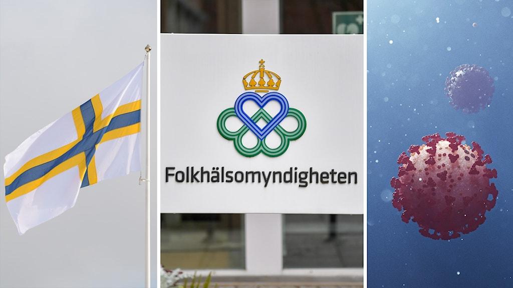 Kuvassa ruotsinsuomalaisten lippu, Kansanterveysviraston kyltti ja kuvitus koronaviruksesta.